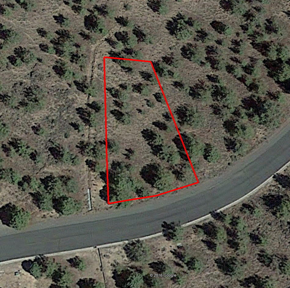 Gently Sloped Lot Near Weed California - Image 2