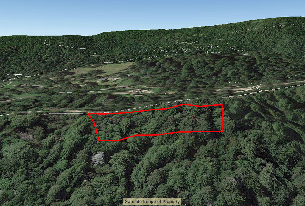 Forested Sloped Property Close to Town - Image 3