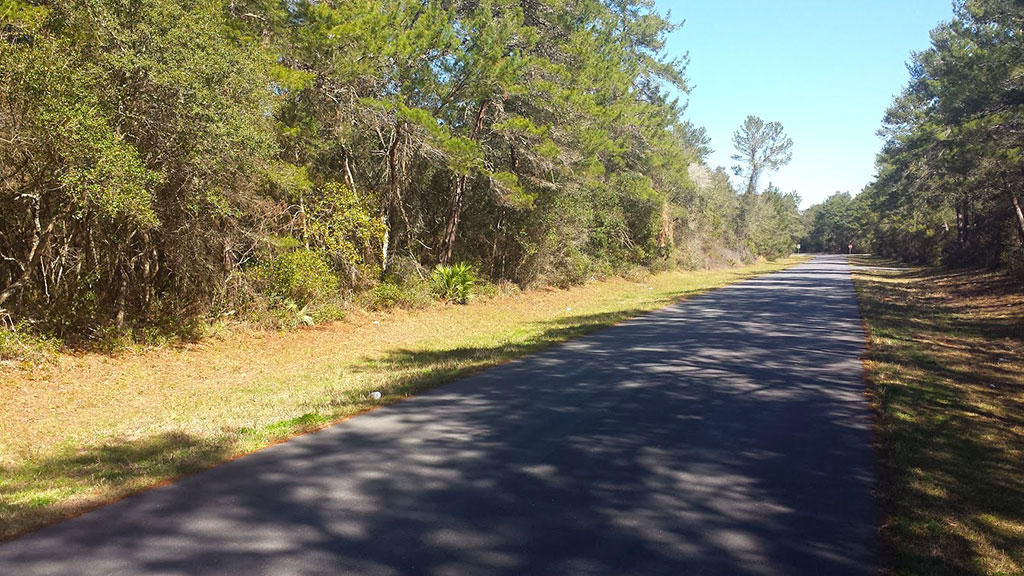 Treed Lot in Marion Oaks Subdivision of Ocala Florida - Image 3
