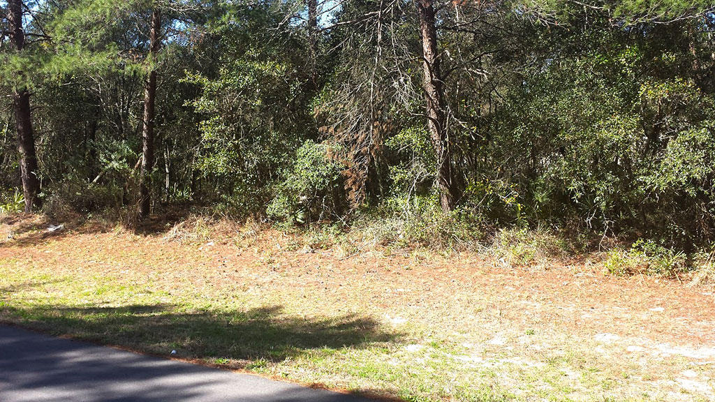 Treed Lot in Marion Oaks Subdivision of Ocala Florida - Image 4