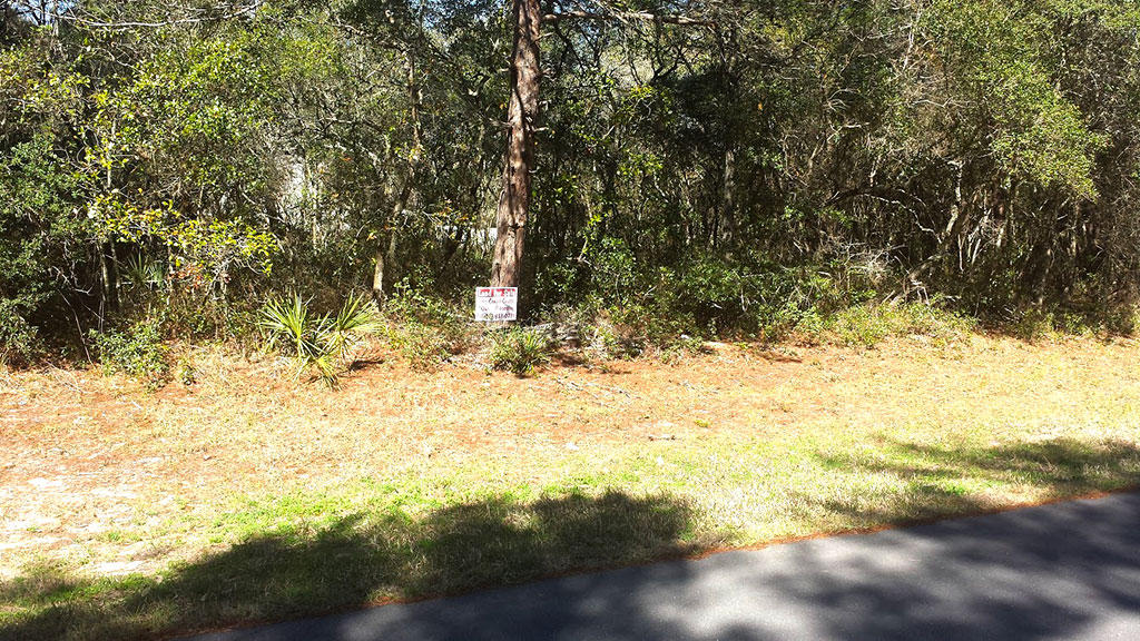 Treed Lot in Marion Oaks Subdivision of Ocala Florida - Image 5