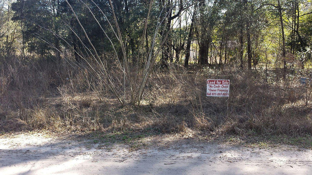 Treed Property in Belleview Heights Estates in Summerfield - Image 3