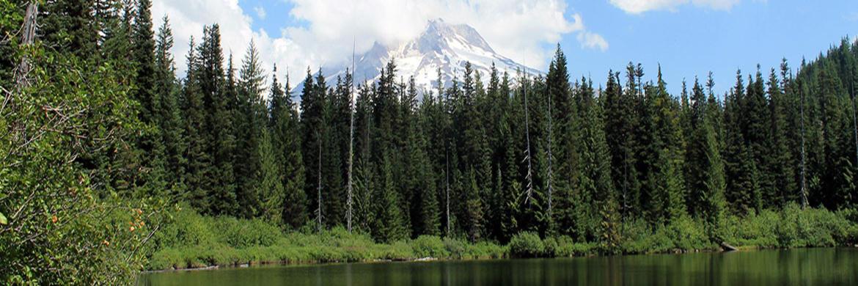 Land Property For Sale In Oregon Landcentral