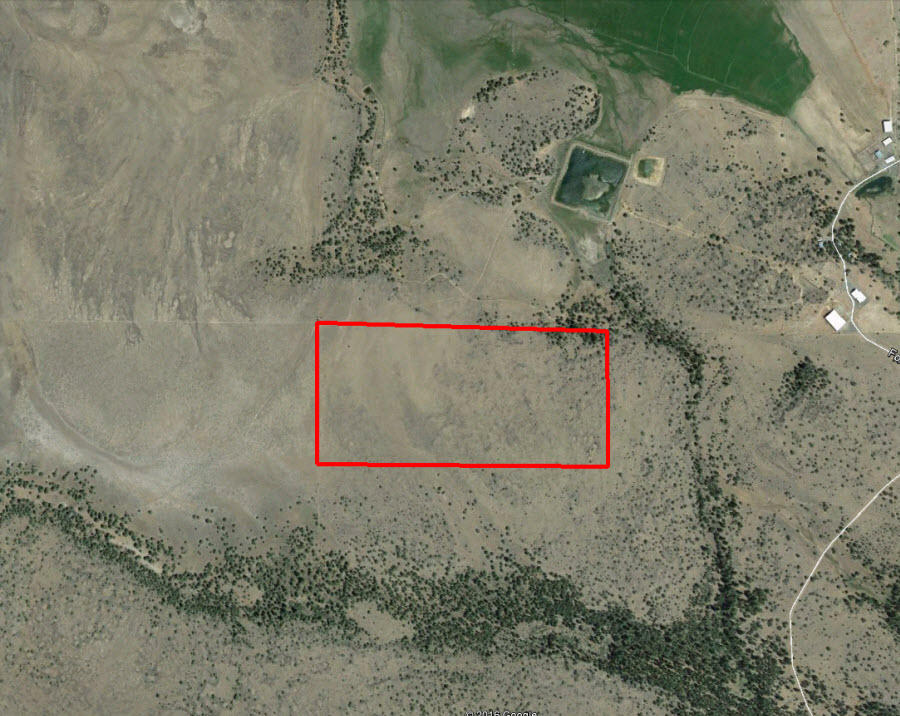 Huge, Private 80 Acres Near Devil Lake - Image 2