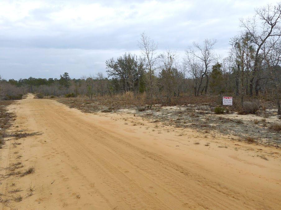 Half an Acre Rural Home Site in Interlachen Florida - Image 4