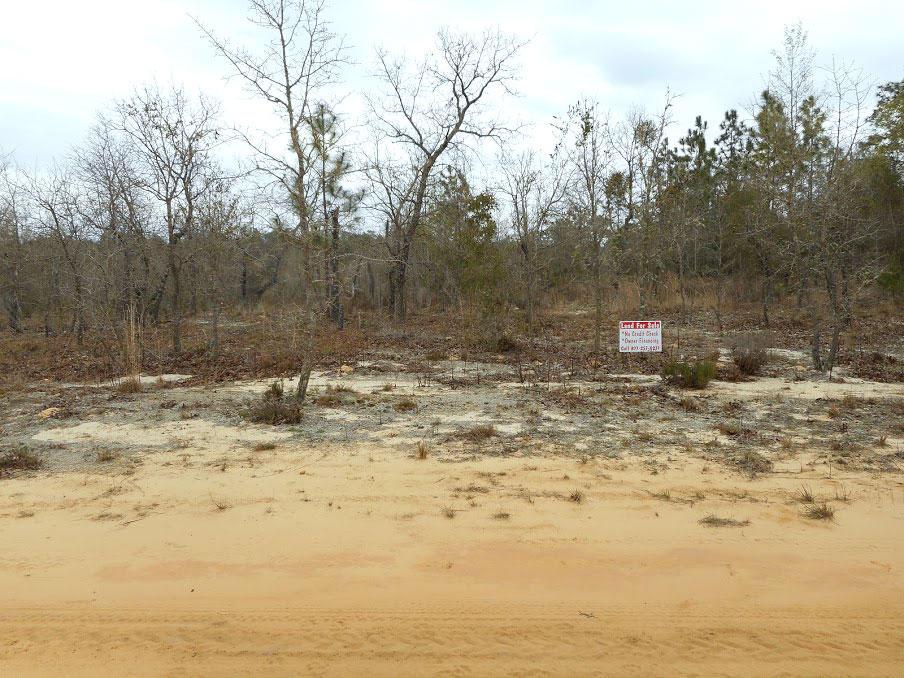 Half an Acre Rural Home Site in Interlachen Florida - Image 5