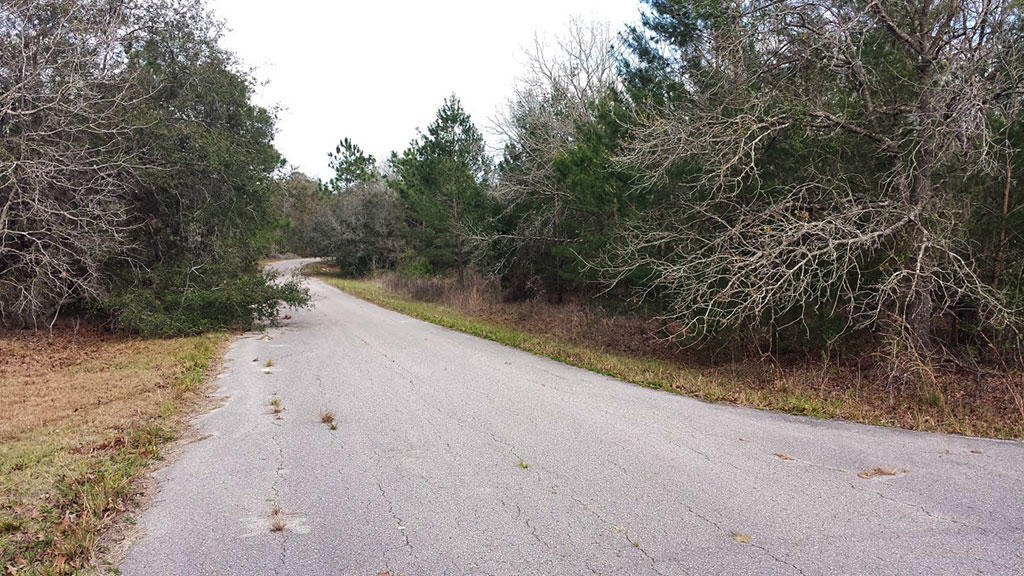 Over Half an Acre Parcel Near Pecan Lake and Lake Weir - Image 5
