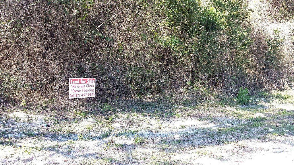 Belleview Florida Lot Close to Shopping and Schools - Image 3