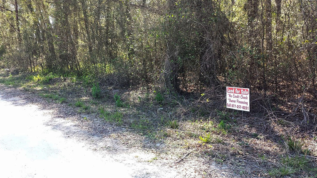Over a Quarter of an Acre Property Only 2 Miles from Taylor College - Image 2