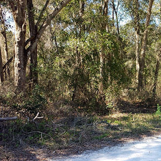 Property with Good Access in Developing Belleview Subdivision - Image 0