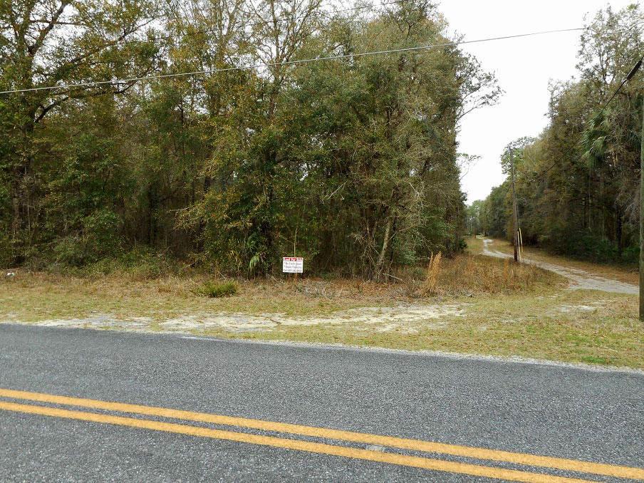 Quiet Treed Corner Lot in Fort McCoy - Image 3