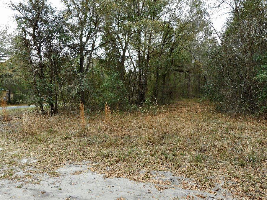 Quiet Treed Corner Lot in Fort McCoy - Image 5