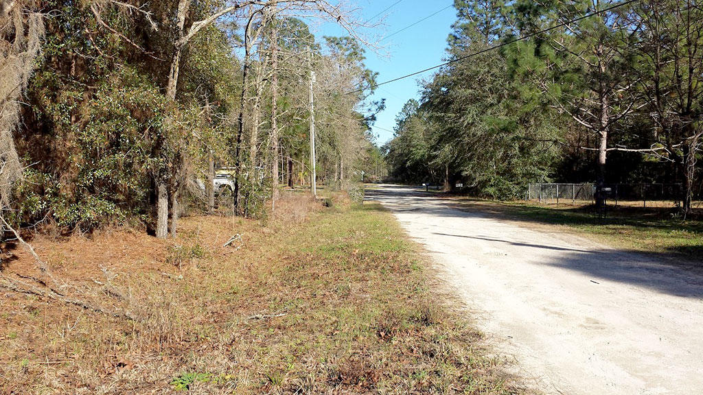 Residential Lot in Charming Ocala Florida - Image 4