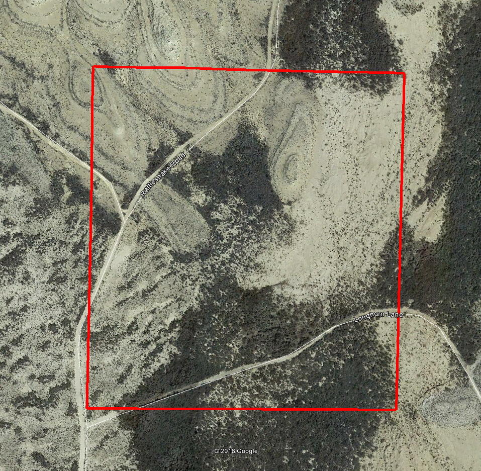 Forty Remote Acres In Texas - Image 2