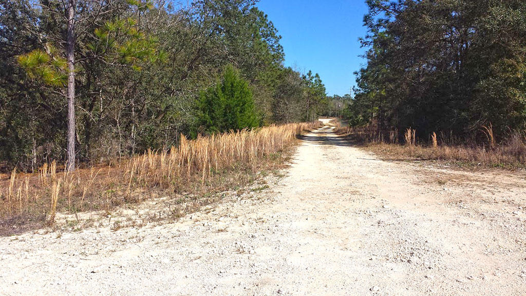 Well Over Half an Acre Parcel on Corner Lot - Image 3