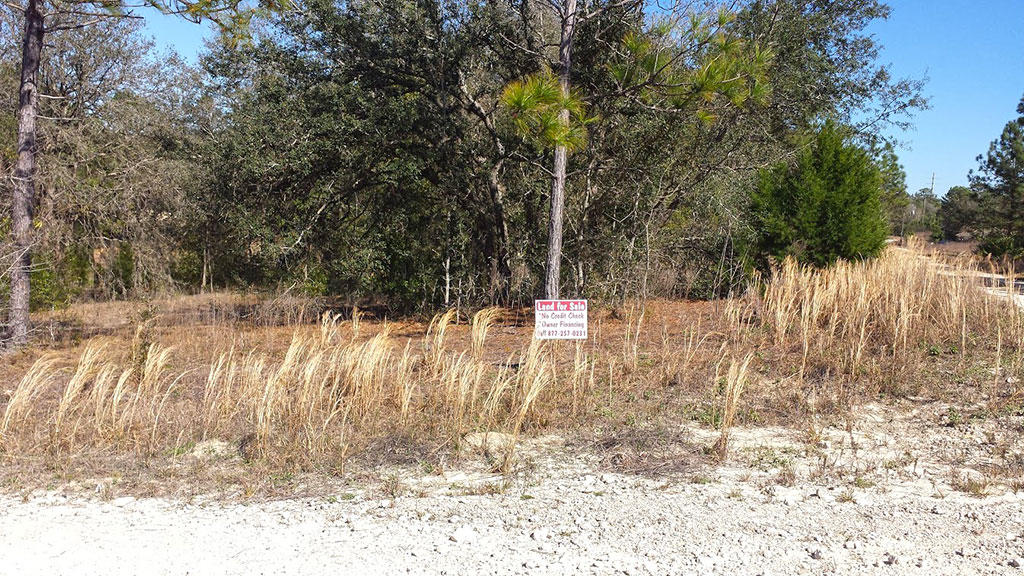Well Over Half an Acre Parcel on Corner Lot - Image 4