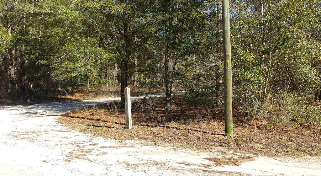 Treed Lot Just Under an Acre - Image 4