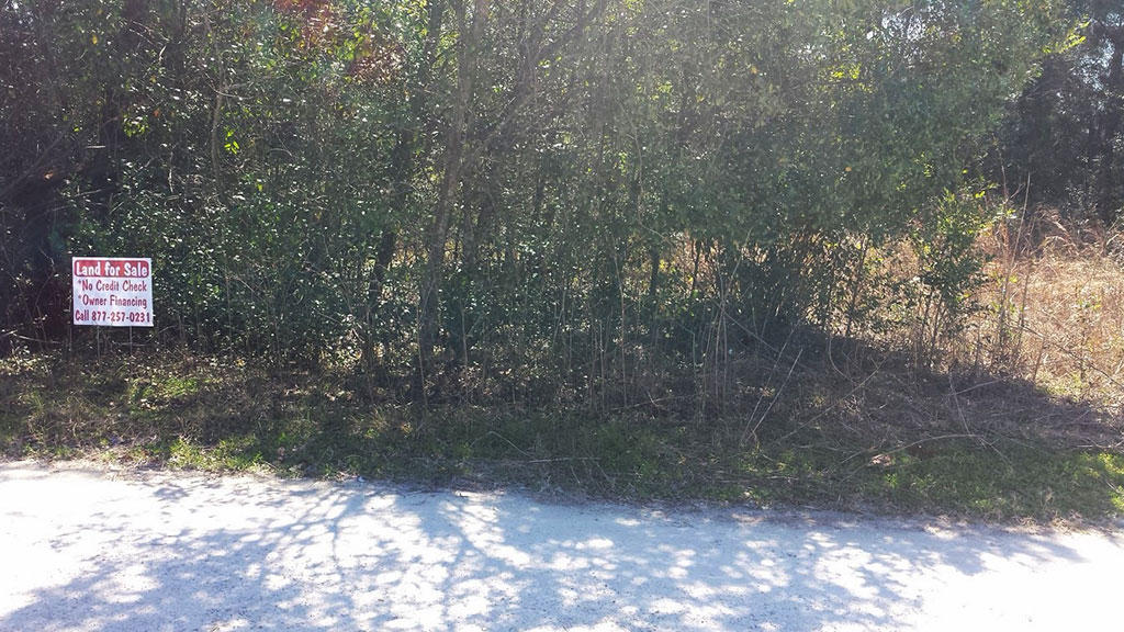 Quaint Residential Lot in Summerfield Florida - Image 4