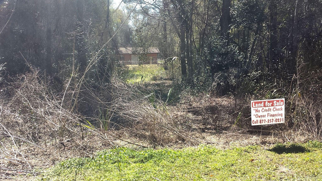 Nearly 0.25 Acres Close to Belleview - Image 4
