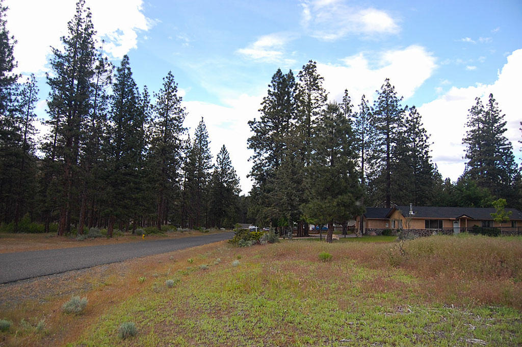 Classic Northern California Property in Lake Shastina - Image 3