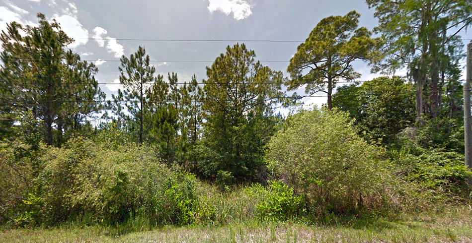 Over 2 Acres on Drifting Sand Drive - Image 2