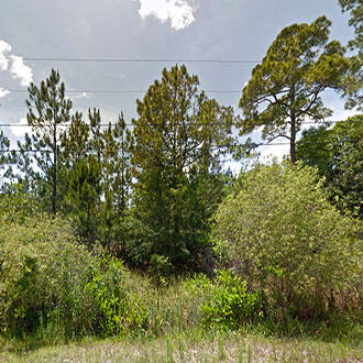 Over 2 Acres on Drifting Sand Drive - Image 0