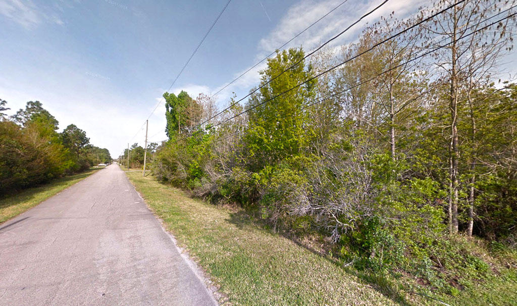 One Acre of Farming or Residential Land in Great New Neighborhood - Image 5