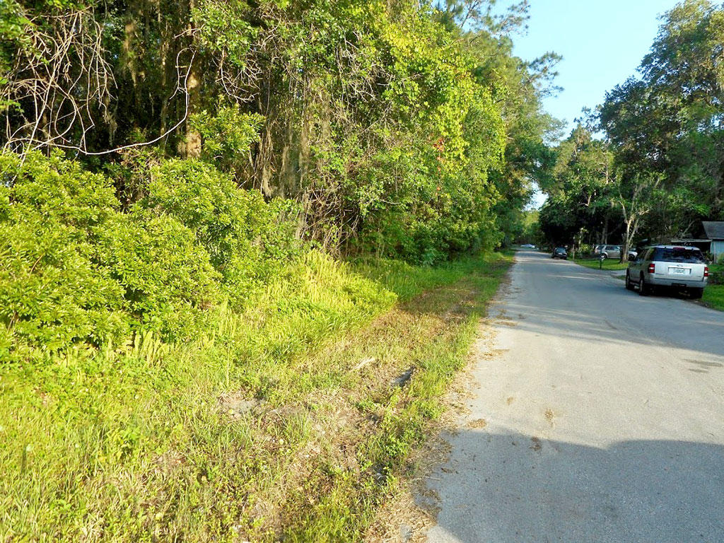 Residential Lot close to St Johns River - Image 3
