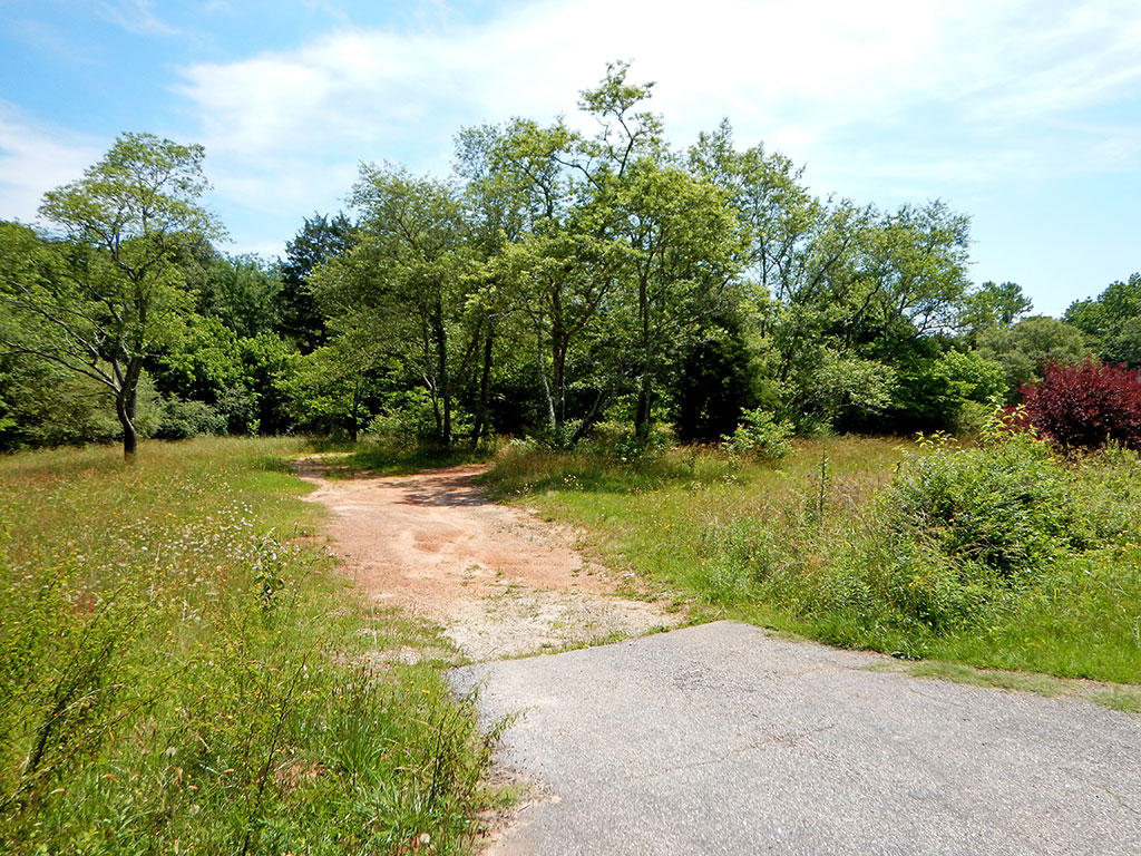 Large Acreage South of Greenville - Image 2