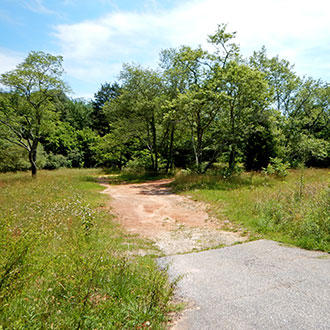 Large Acreage South of Greenville - Image 0
