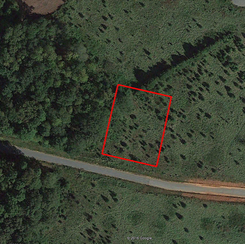 Beautiful Lot in Up and Coming Area Near Easley - Image 1