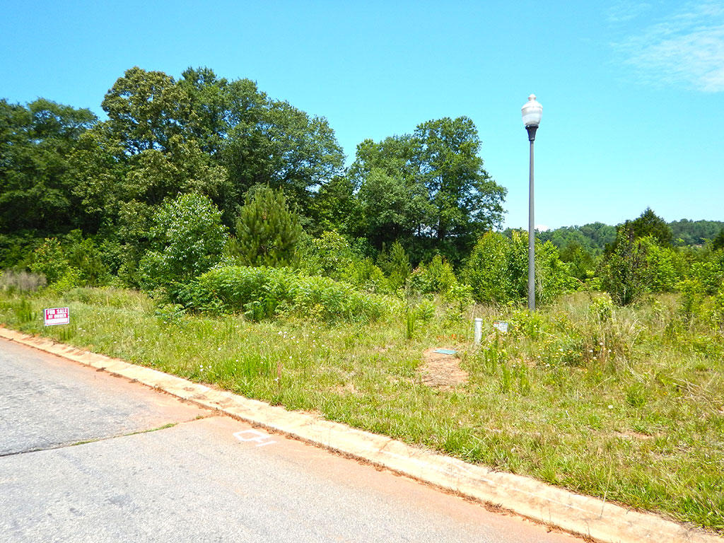 Beautiful Lot in Up and Coming Area Near Easley - Image 2