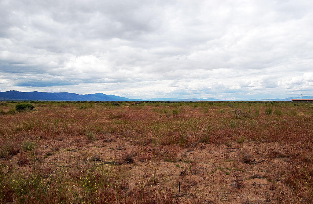 Small Lot in Rural Region of Honey Lake Valley - Image 4