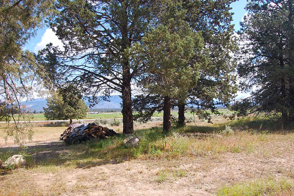 Gorgeous lot in Northern California with Tons of Amenities - Image 3