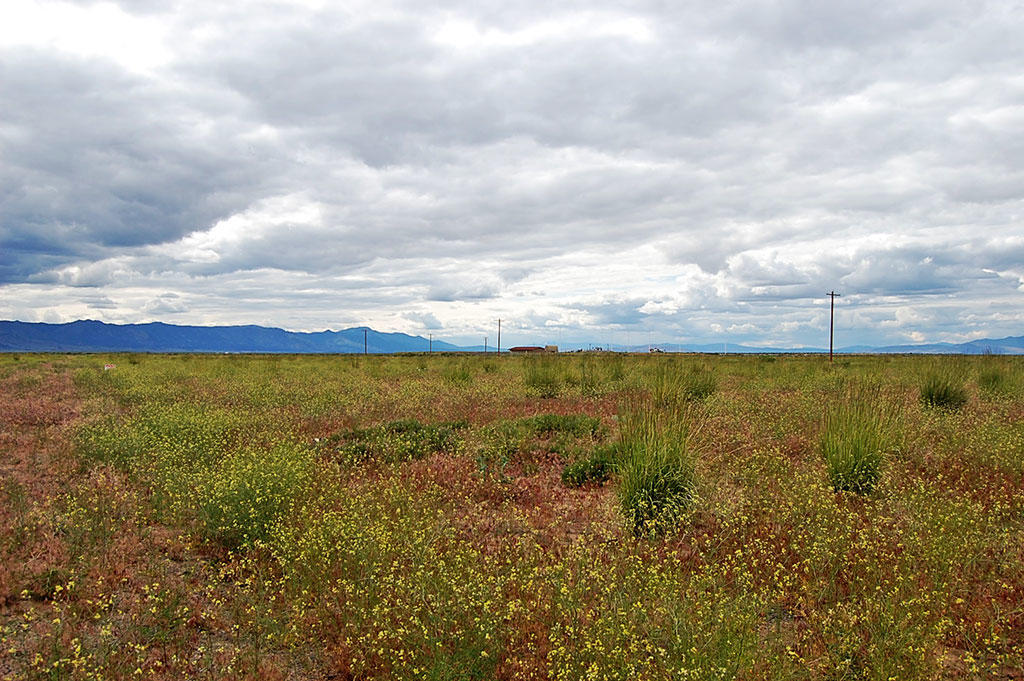 Cleared Flat Lot in Doyle California - Image 4