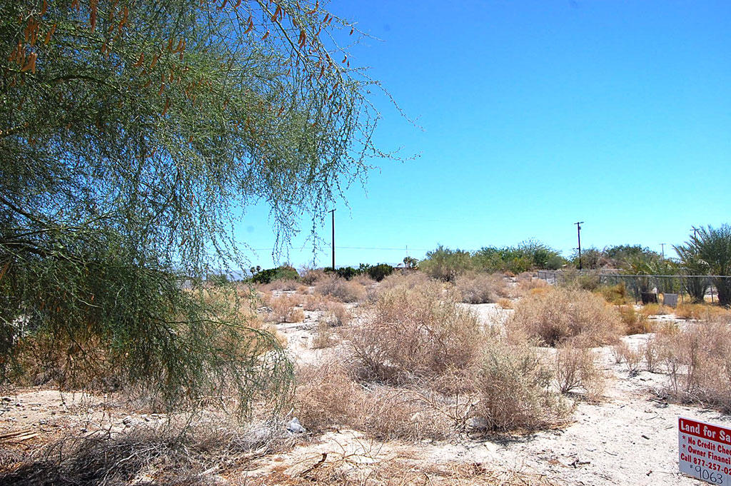 Large Lot Homesite in Desert Oasis - Image 4
