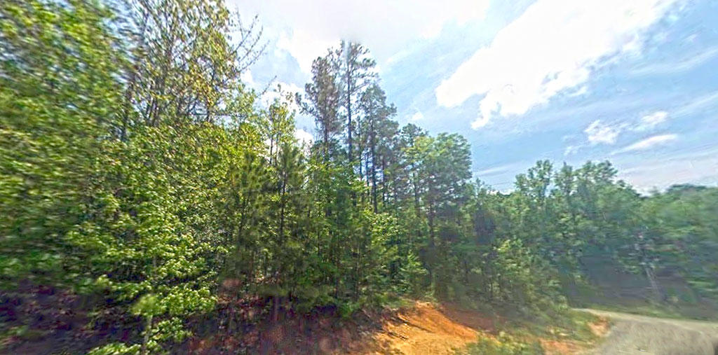 Amazing lot in Developing Neighborhood in Fort Mill South Carolina - Image 2