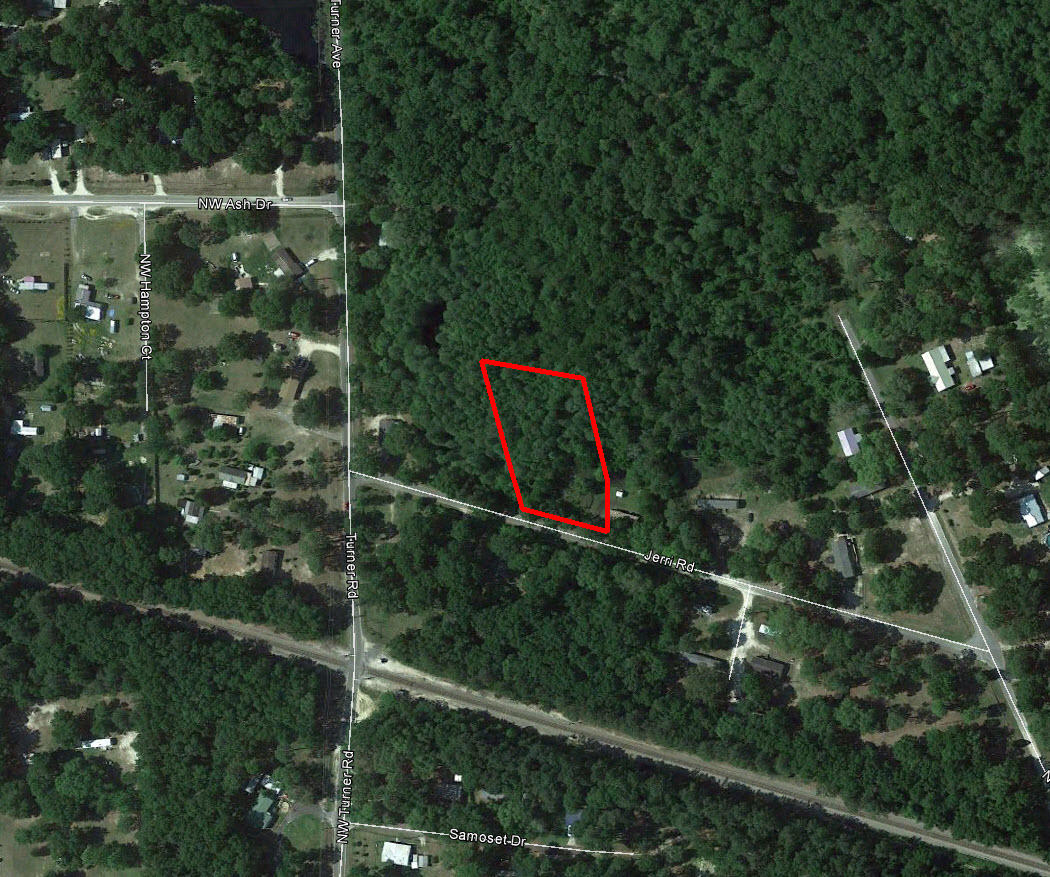 Over an Acre Near Lake City Florida - Image 2