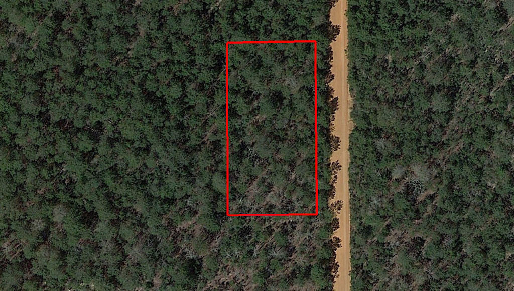 Rural Tree Covered Property in Crestview Florida - Image 1
