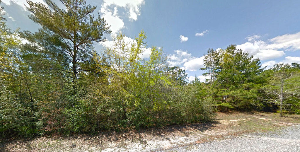 Rural Tree Covered Property in Crestview Florida - Image 3