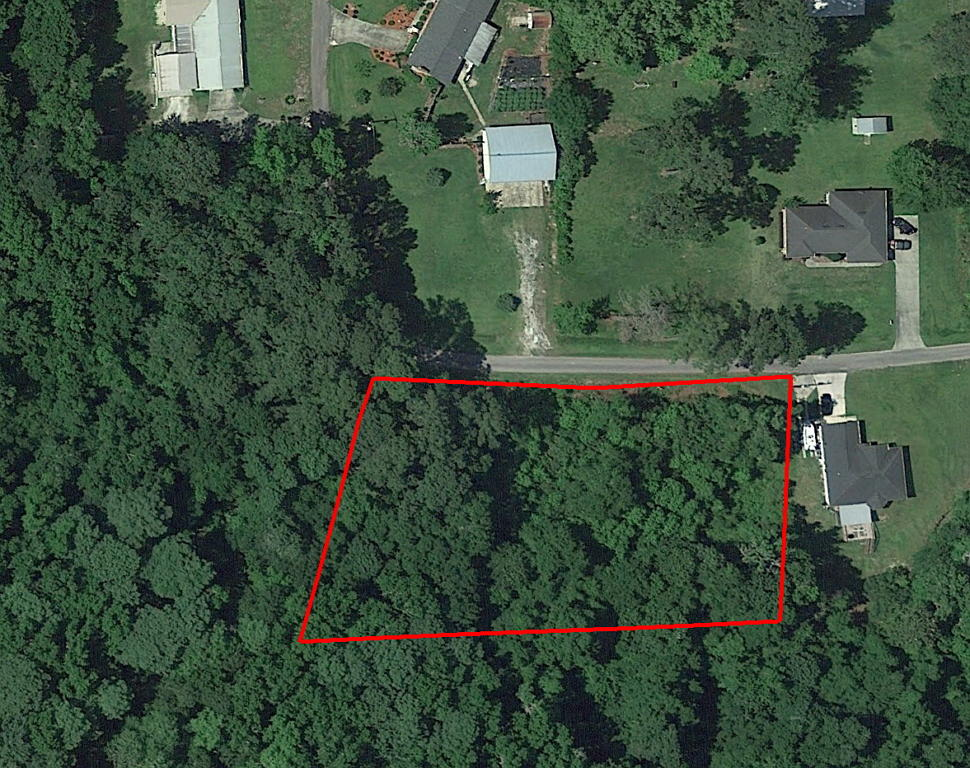 Gorgeous Lot in Nice Residential Neighborhood in Lake City - Image 1
