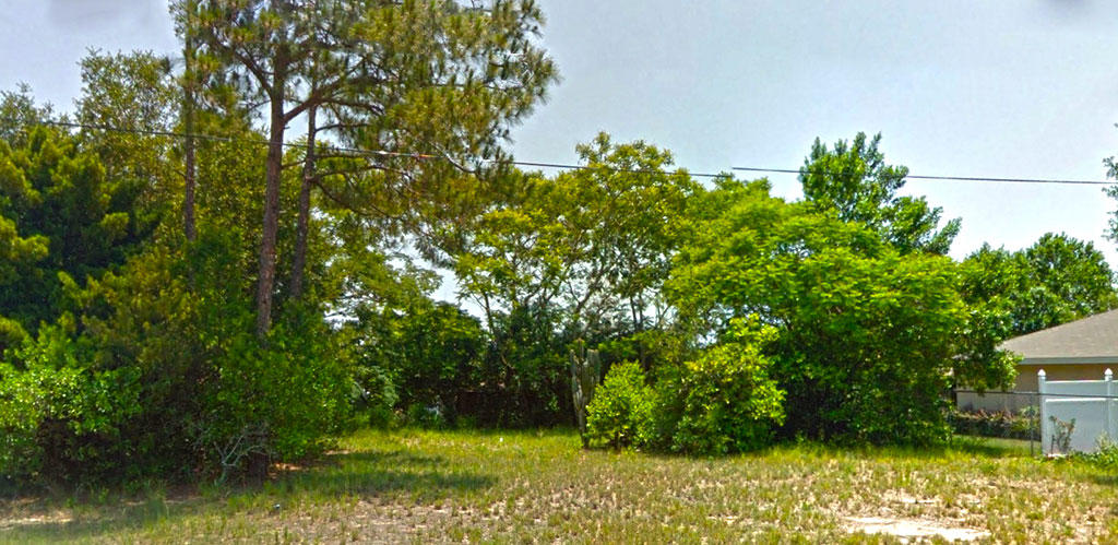 Residential Lot in Haines City - Image 4