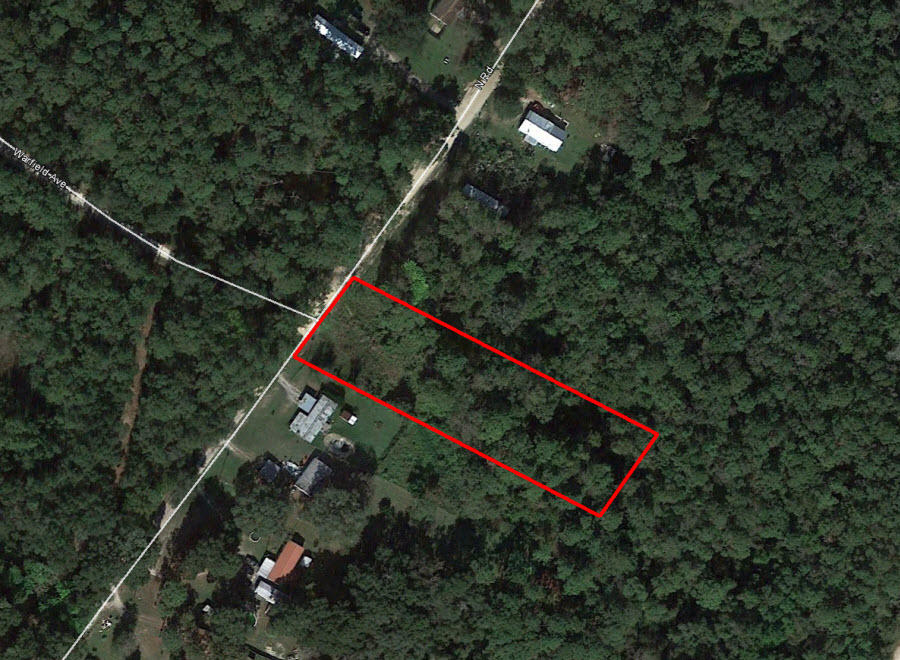 Acreage Property a Few Miles From St Johns River - Image 2