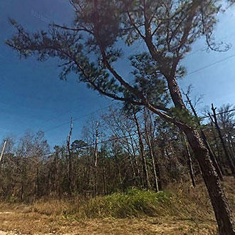 Acreage Property a Few Miles From St Johns River - Image 1