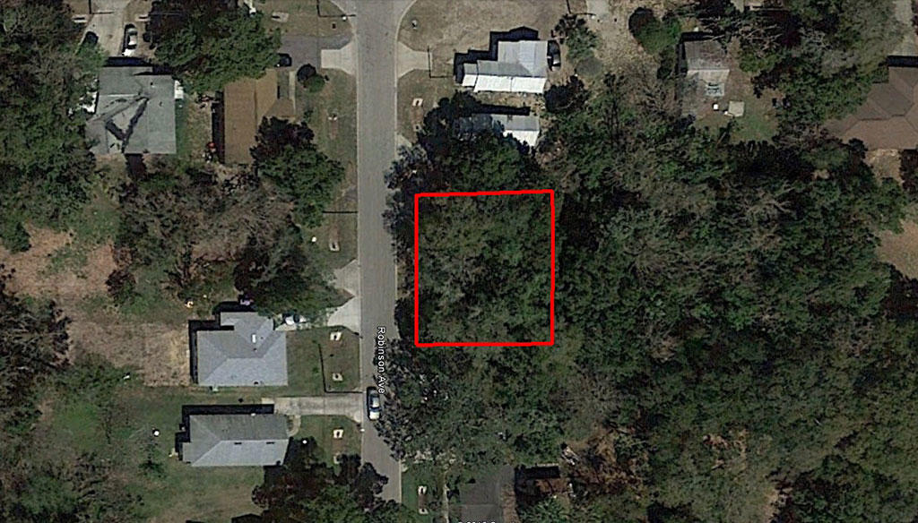 Small Parcel with Great Access Less Than 30 Minutes from Orlando - Image 2