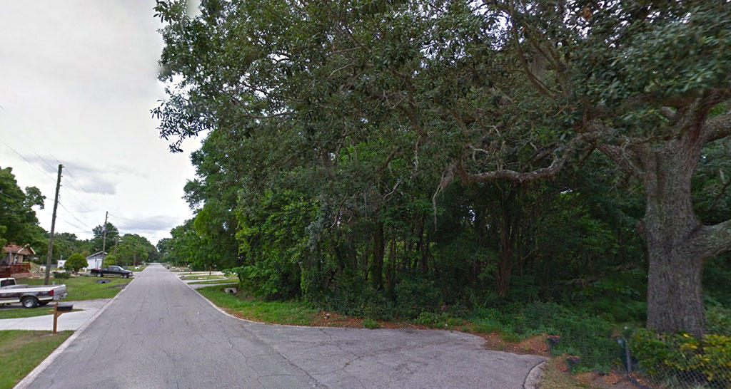 Small Parcel with Great Access Less Than 30 Minutes from Orlando - Image 4