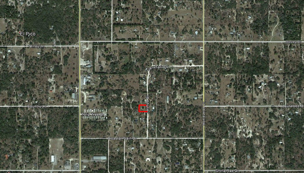 Mobile Home Friendly Half Acre Property in Springhill - Image 2