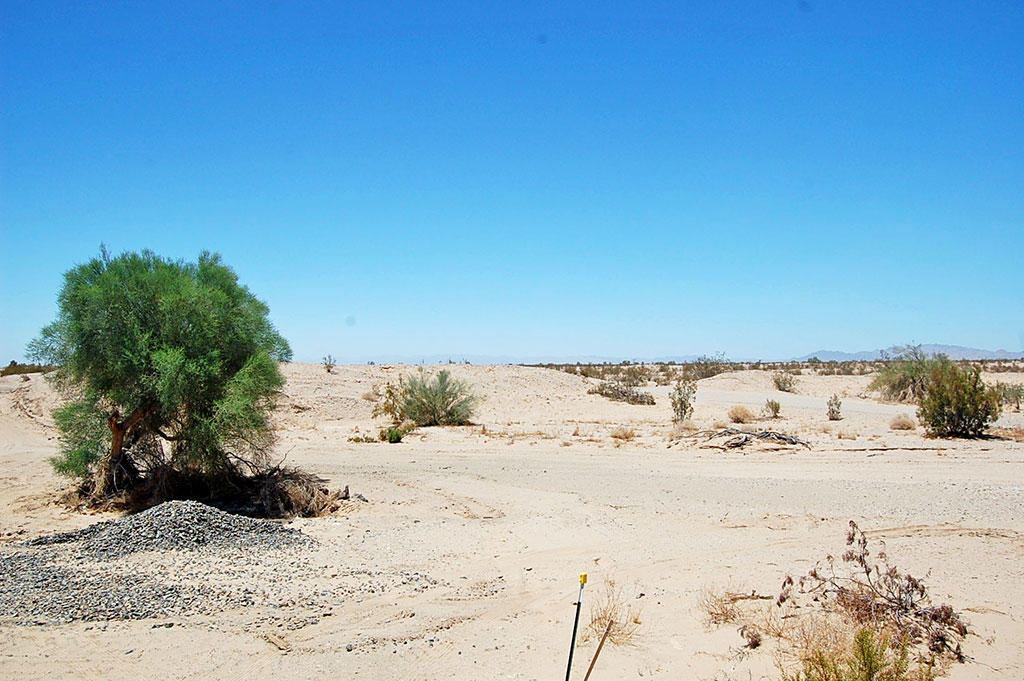 21 Acre Property About 12 Miles Northeast of Calipatria - Image 3
