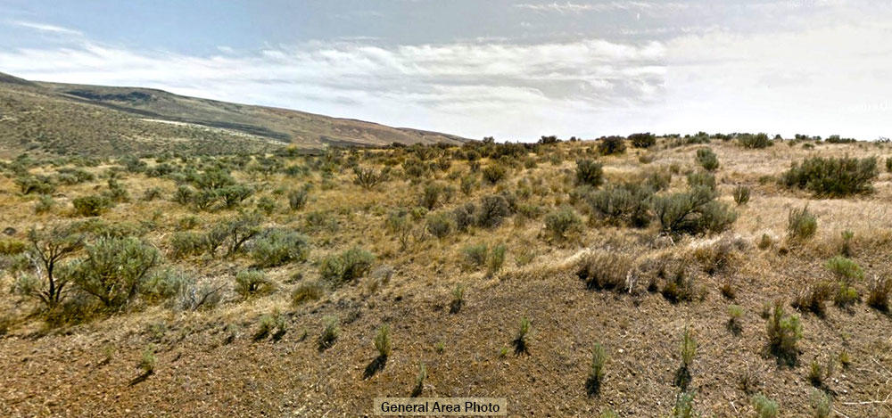 12 Plus acres on Hardy Road in Yakima County - Image 4