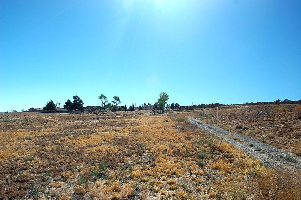 Over 2 Acres Near Lake Riverside - Image 3